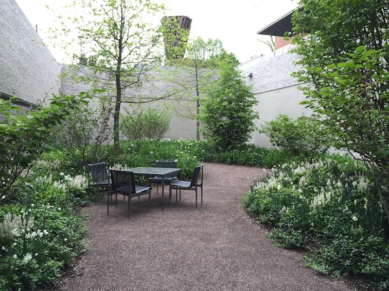 Spring at Andlinger Center