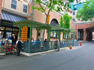 Opening for Princeton Parklet Energy Playground