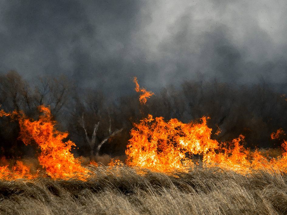 field on fire with heavy black smoke
