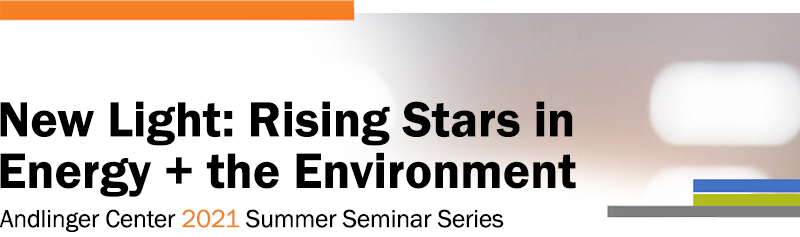 Logo for New Light: Rising Stars in Energy and the Environment